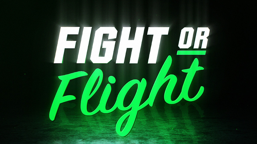 Fight Or Flight: Full Card And How To Watch